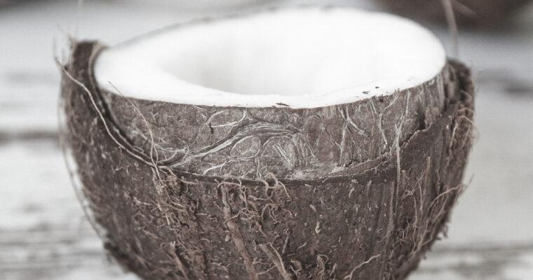 Facts über Kokosblütenzucker